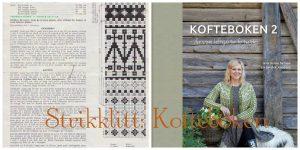 Kofteboken. Avspark for Strikklitt