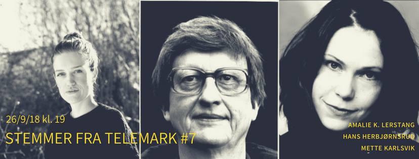 Stemmer fra Telemark #7